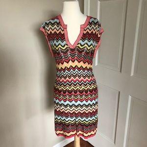 BCBG MaxAzria Knit Dress with Slip